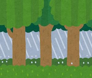 bg_rain_natural_mori.jpg